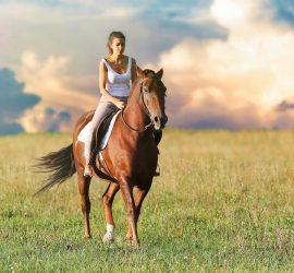 Szkoła jazdy konnej Łódź